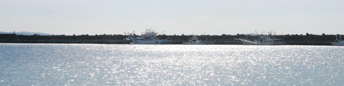 石巻魚市場付近から湾内を撮影しました。防潮のため積み上げられたテトラポットの内側の岸壁から大きく張り出した船着き場に小型漁船が停泊しています。普段はこんなに穏やかな海です。